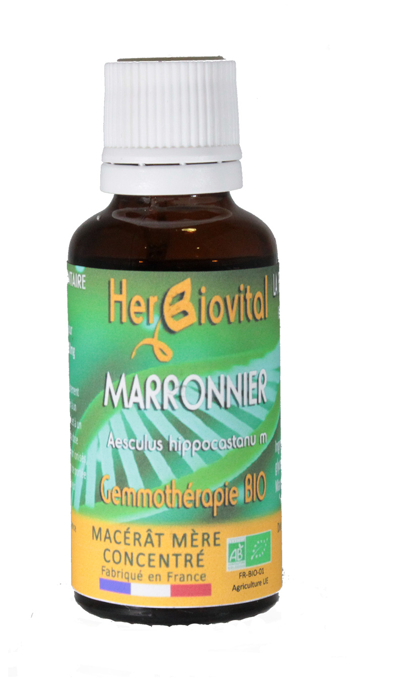 Marronnier macérât mère de bourgeon Bio - 30 ml